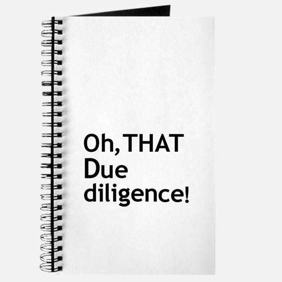 Due Diligence 2 Journal