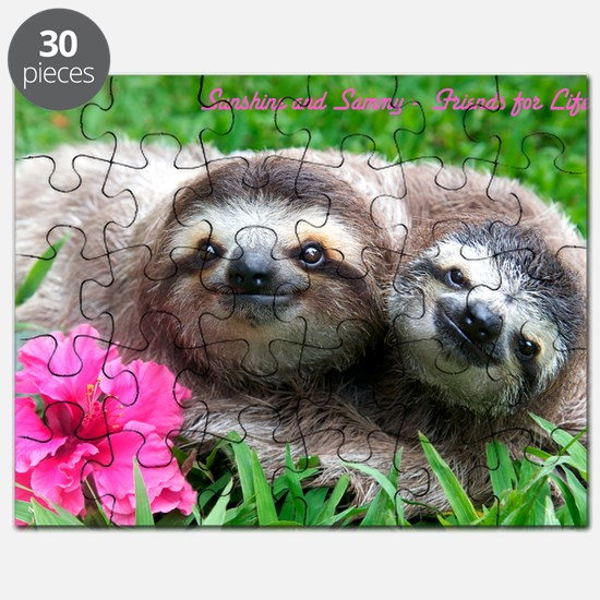 Puzzle of Sunshine and Sammy Sloths