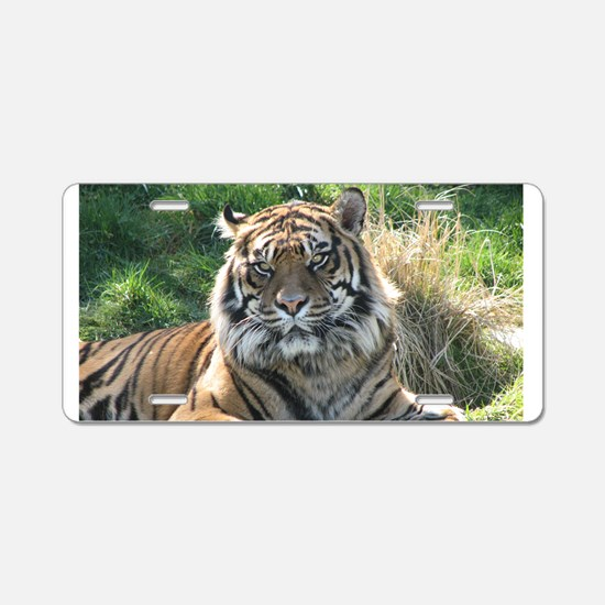 Helaine's Tiger Aluminum License Plate
