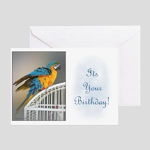 Blue & Gold Macaw Birthday Card II