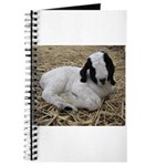 Boer Goat Kid Journal