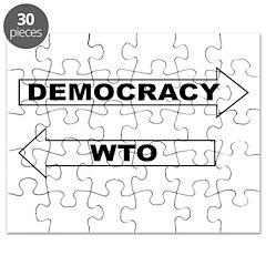 Democracy vs WTO Puzzle