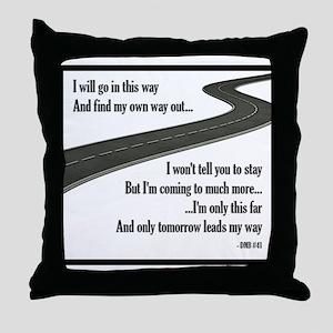 #41 Throw Pillow