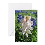 Bluebonnets & Pinkbonnet Greeting Cards (Pk of