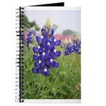 Texas Bluebonnet Journal