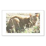 Tabby Cat Rectangle Sticker