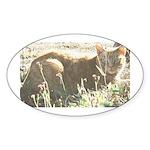Tabby Cat Oval Sticker