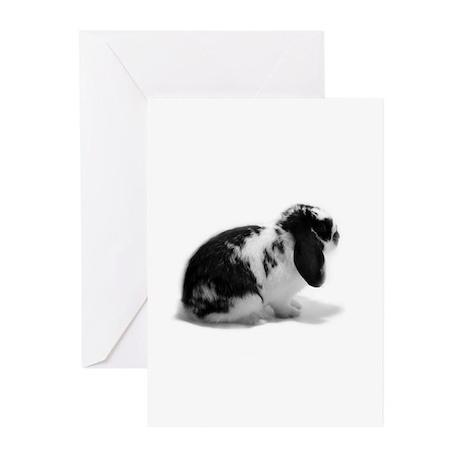 Holland Lop Rabbit - Broken B Greeting Cards (Pk o
