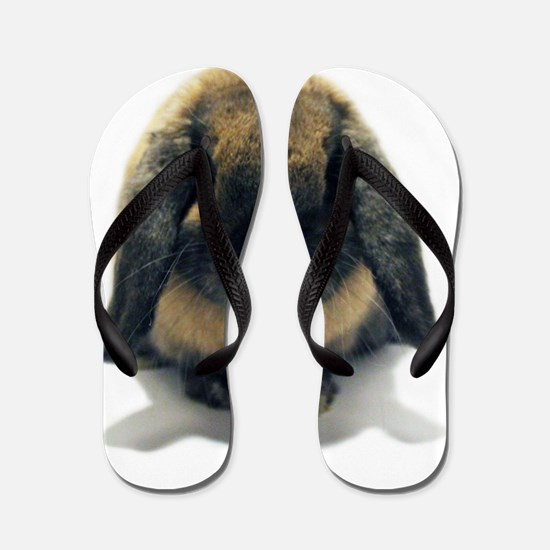 Holland Lop Rabbit Tort Flip Flops