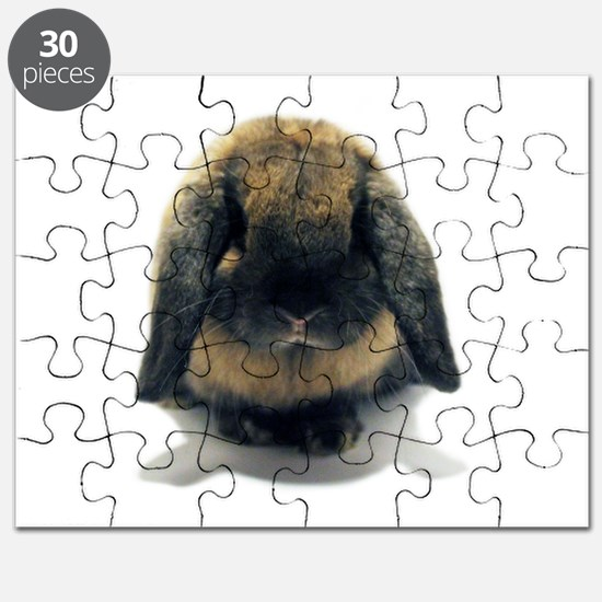 Holland Lop Rabbit Tort Puzzle