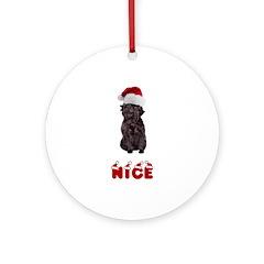 Nice Affenpinscher Ornament (Round)
