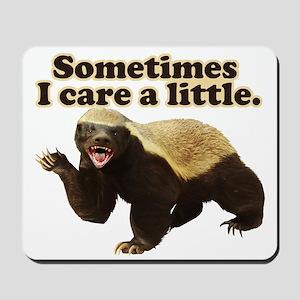 Honey Badger Sometimes I Care Mousepad