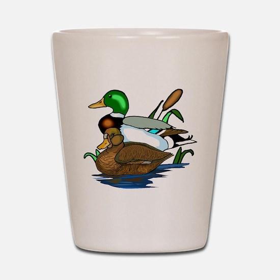 Mallard Ducks Shot Glass