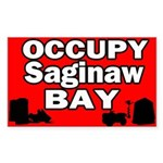 occupy saginaw bay