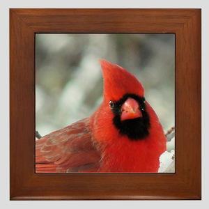 Cardinal Winter Framed Tile