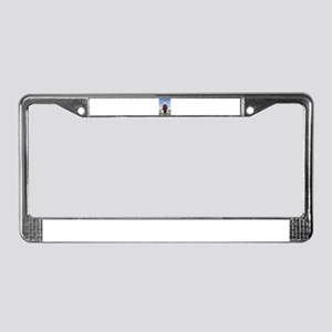 Obama Super Hero License Plate Frame