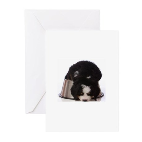 Passed out Puppy Greeting Cards (Pk of 10)