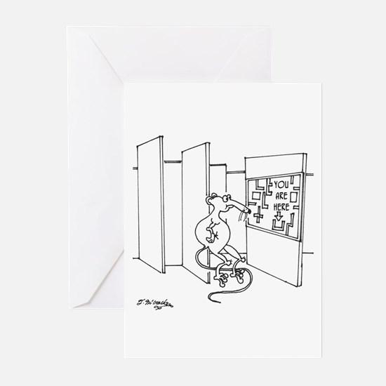 You Are Here Greeting Cards (Pk of 20)