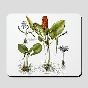 Arium Print Mousepad