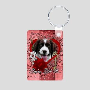 Valentines - Key to My Heart Springer Aluminum Pho