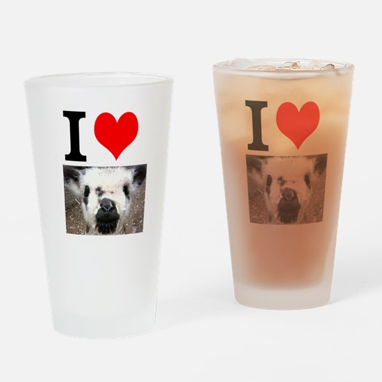 Pictures of Goats and Sheep w Drinking Glass