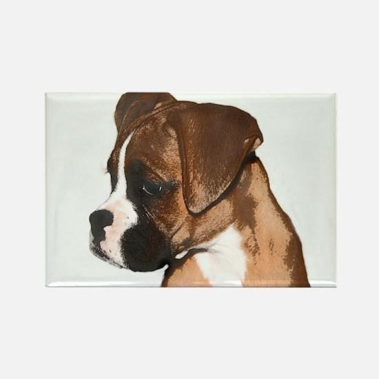 Boxer Dog Rectangle Magnet