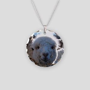 BABY ALPACA III™ Necklace Circle Charm