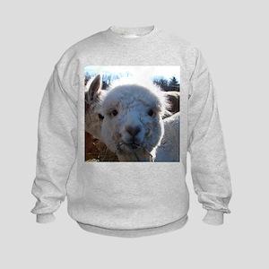 BABY ALPACA III™ Kids Sweatshirt