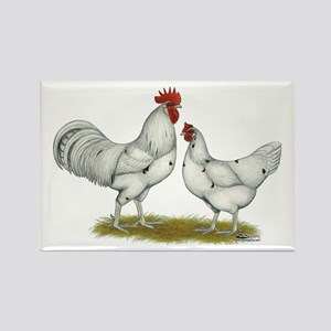 Austra White Chickens Rectangle Magnet