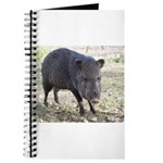 Javelina Journal