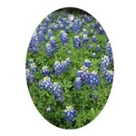 Bluebonnet Ornament (Oval)