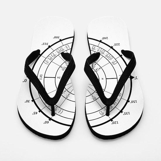 Math Geek Unit Circle Flip Flops