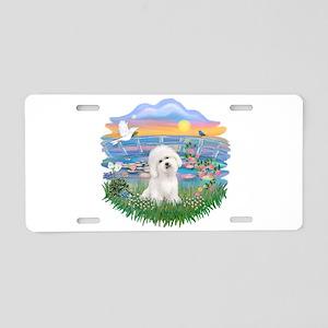 SunriseLilies/Bichon#3 Aluminum License Plate