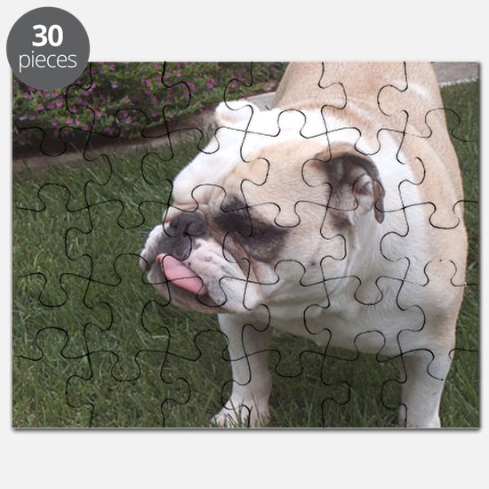 BIrthday Schmirthday Puzzle