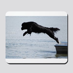 Water Dogs Mousepad