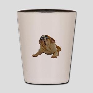 Bulldog Shot Glass