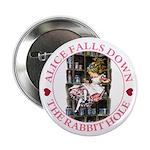 Alice Falls Down the Rabbit Hole 2.25