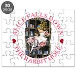 Alice Falls Down the Rabbit Hole Puzzle