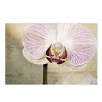 Pink Orchid Petal Postcards (Package of 8)