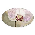 Pink Orchid Petal Sticker (Oval)