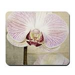 Pink Orchid Petal Mousepad