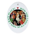 In This Crazy Place Ornament (Oval)