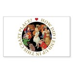 In This Crazy Place Sticker (Rectangle 10 pk)