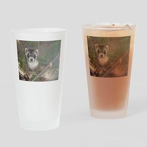 Ferrets Drinking Glass