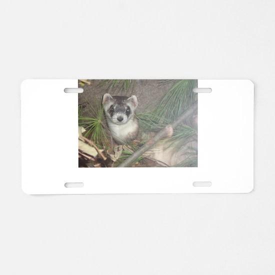Ferrets Aluminum License Plate