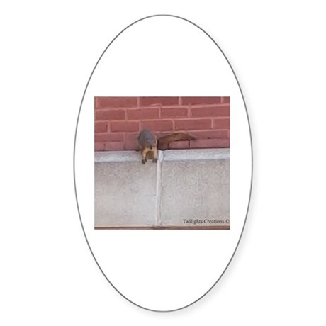 Hanging Out Squirrel Sticker (Oval)