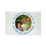 I'm Mad, You're Mad Rectangle Magnet (100 pack)