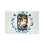 Alice Down the Rabbit Hole Rectangle Magnet (100 p