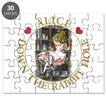 Alice Down the Rabbit Hole Puzzle