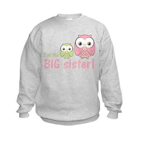 Big Sister Owl Pink/Green Kids Sweatshirt